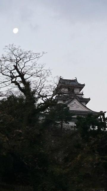 31年1月24日早朝の高知城.JPG